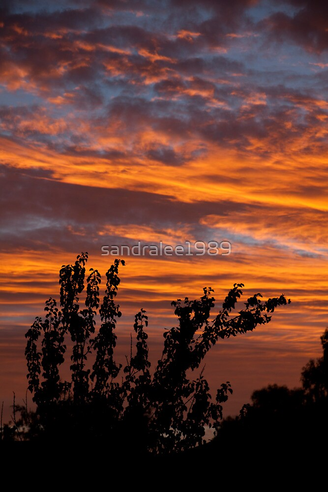 Fiery suburban sunset by sandralee1989