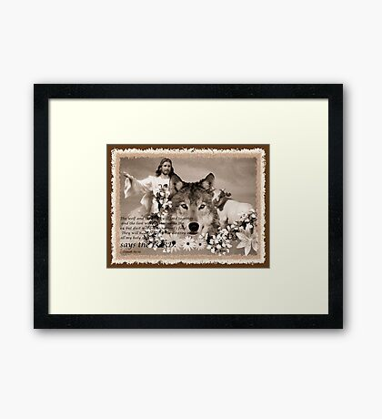 and the wolf and the sheep shall feed together Framed Print