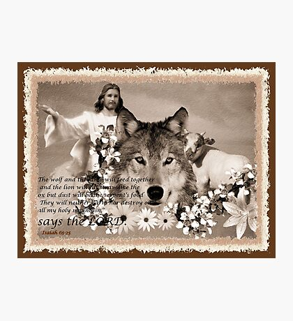 and the wolf and the sheep shall feed together Photographic Print