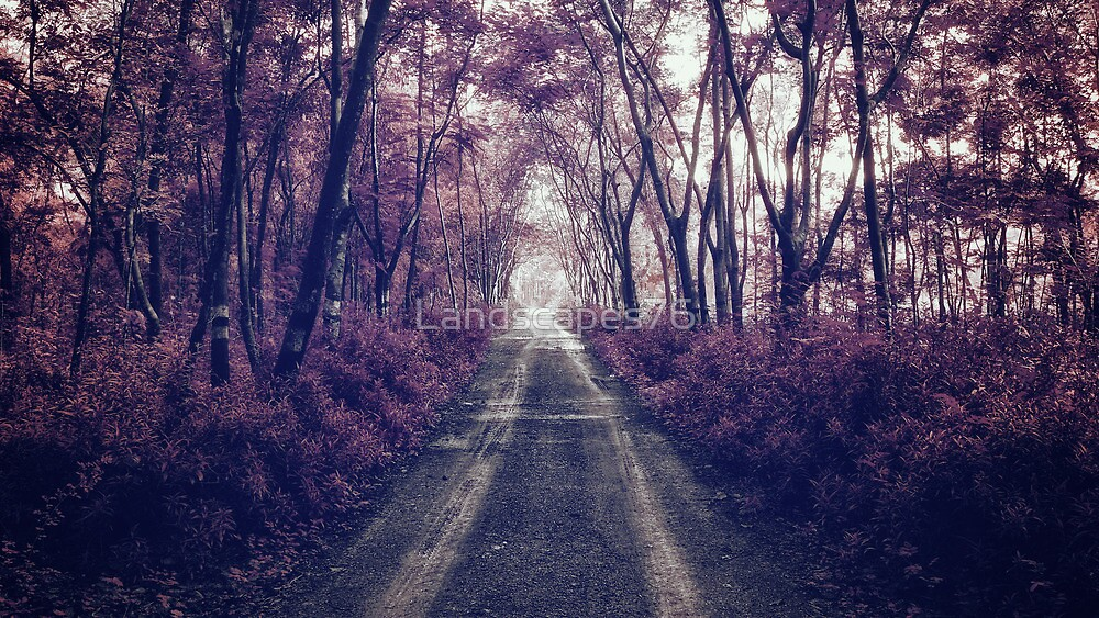 Magical road to... by Landscapes76