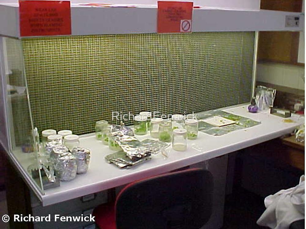 Laminar flow cabinet by RichardFenwick