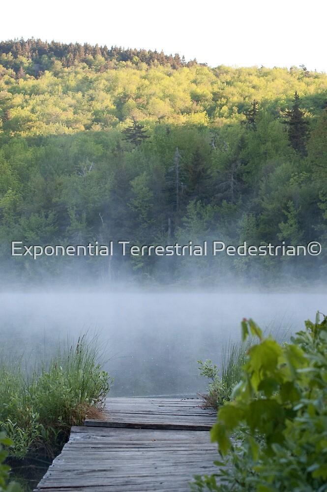 Morning Mist by Exponential Terrestrial Pedestrian©