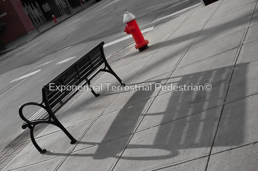 Emptiness by Exponential Terrestrial Pedestrian©