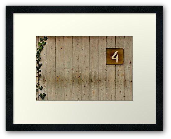 Four seasons by Aleš Sotelšek