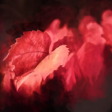 Autumn Rouge    (GO) by RayW