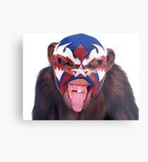 lucha monkey 2 Metal Print