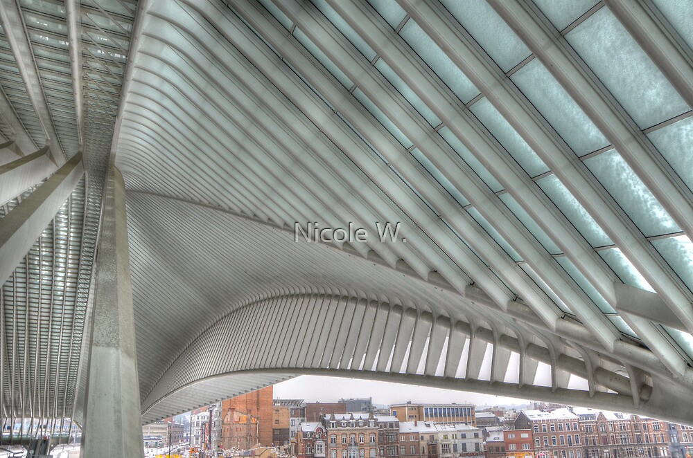 new trainstation in Belgium by Nicole W.