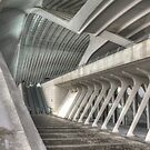 Railway station by Peter Wiggerman