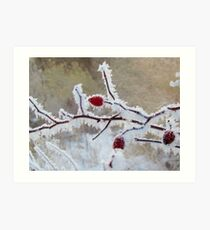 Frost Berry Red Art Print