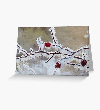 Frost Berry Red Greeting Card