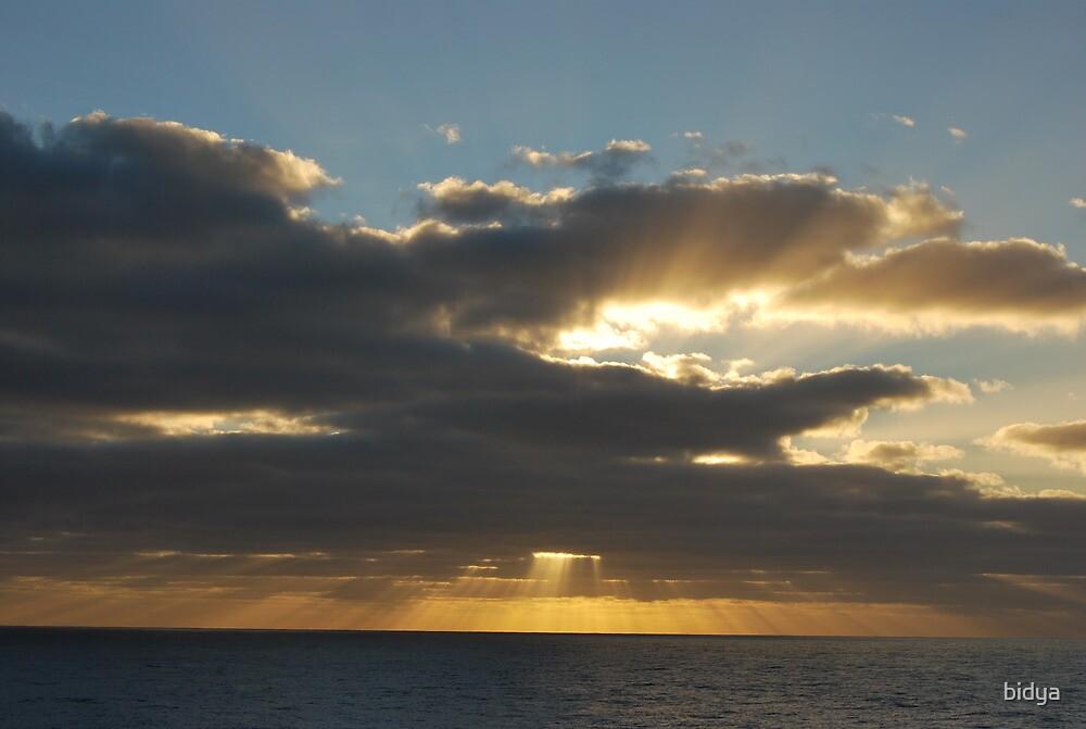 Ocean Sunset by bidya