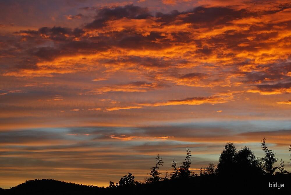 Sunset Red sky by bidya