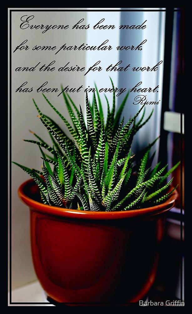 Rumi Quote - Zebra Cactus - Succulent by Barbara Griffin