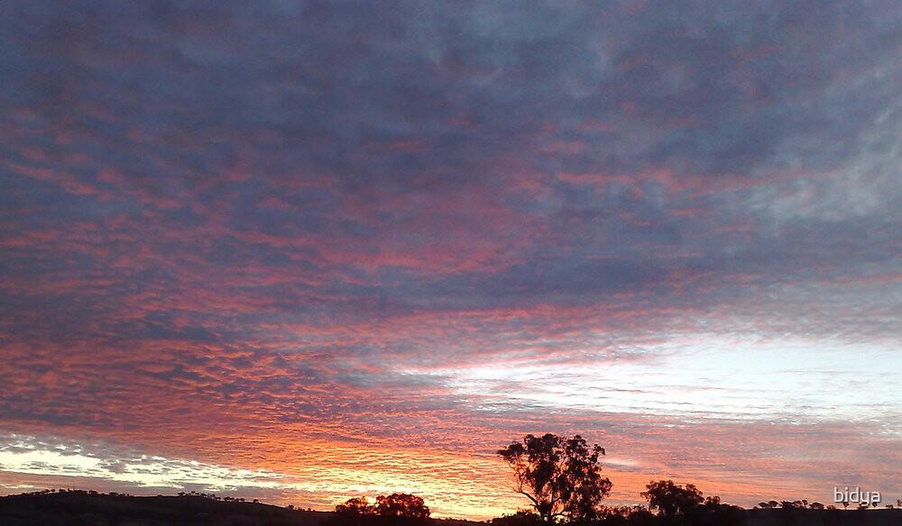 Sunset My Place by bidya