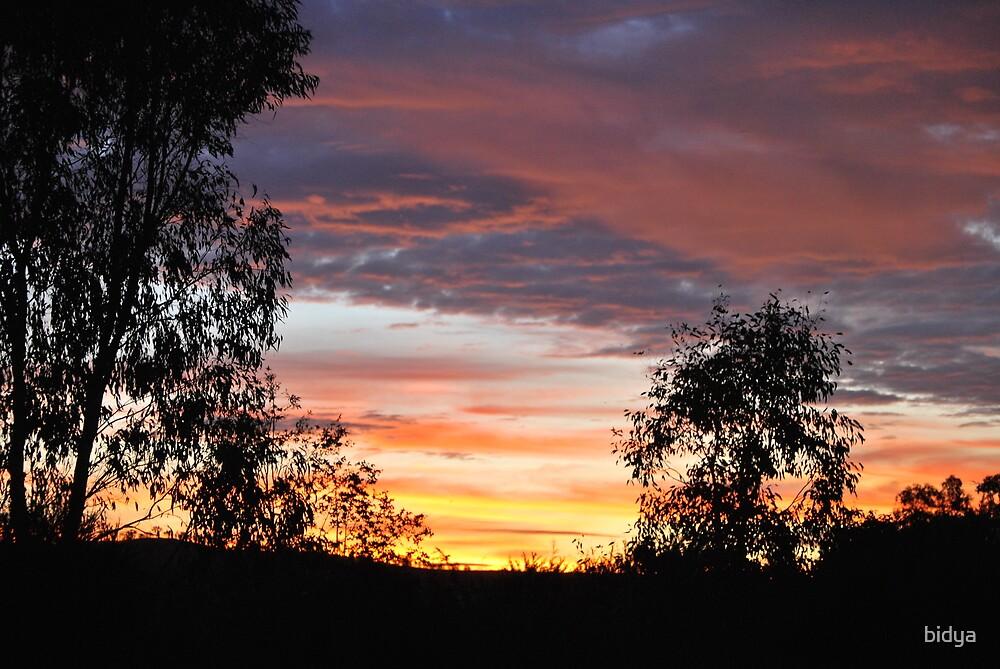 Sunset 3 Trees by bidya