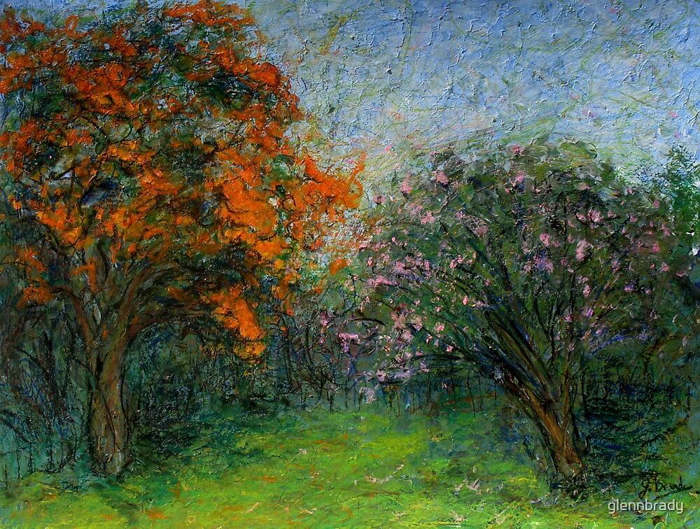 summer tree's by glennbrady