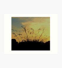 An Evening Sky With Grasses Art Print