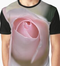 Dreamy Rose Graphic T-Shirt