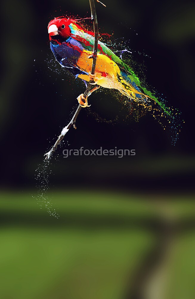 Pintura by grafoxdesigns