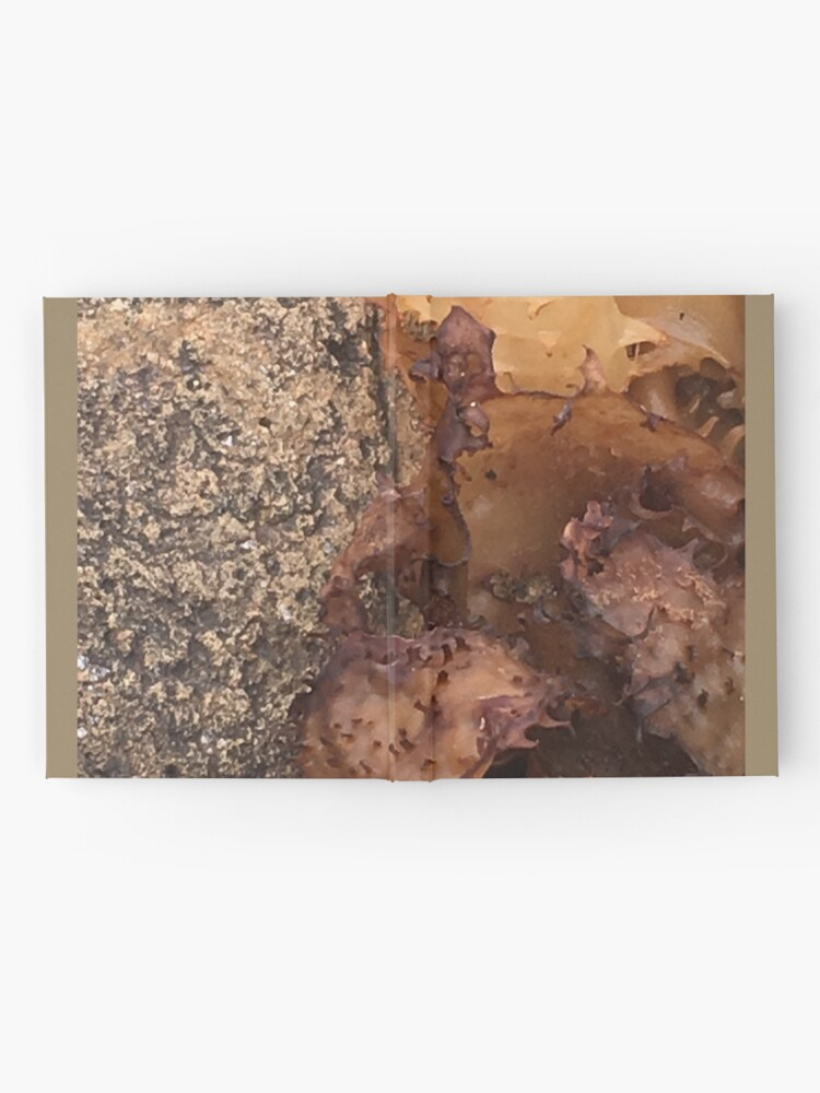Alternate view of amber worlds  Hardcover Journal