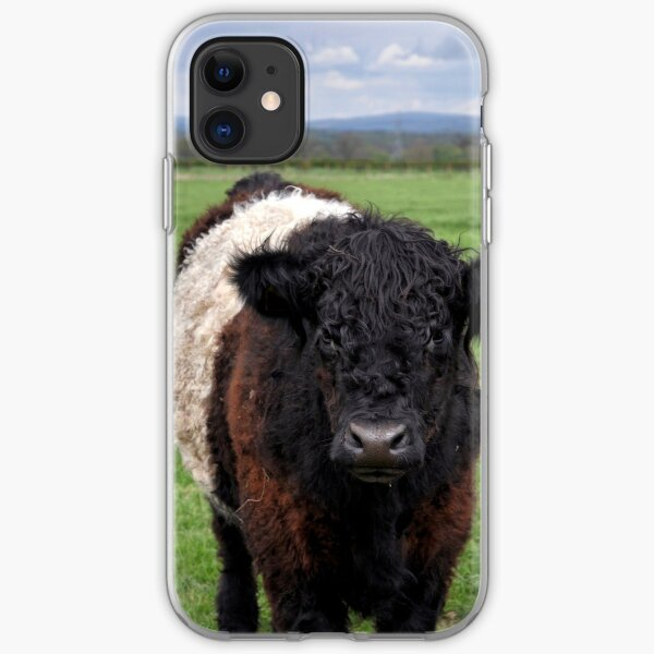 Belted Galloway iPhone Soft Case