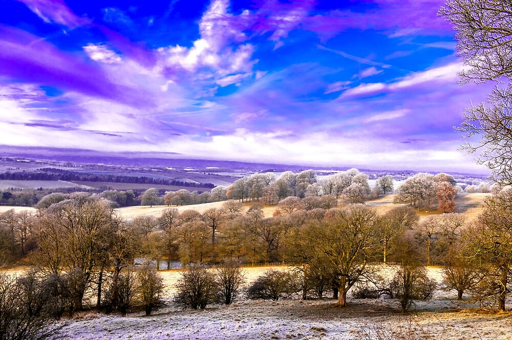 Winter Landscapes by Moments In Time Photography