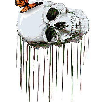 Butterfly skull by survivedesign