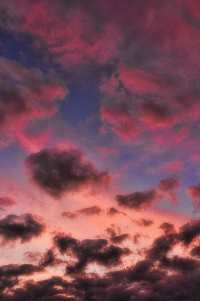Cloud 20121024-25 by Carolyn  Fletcher