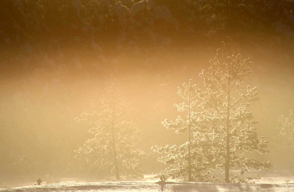 21.1.2013: Cold, Beautiful Morning I by Petri Volanen