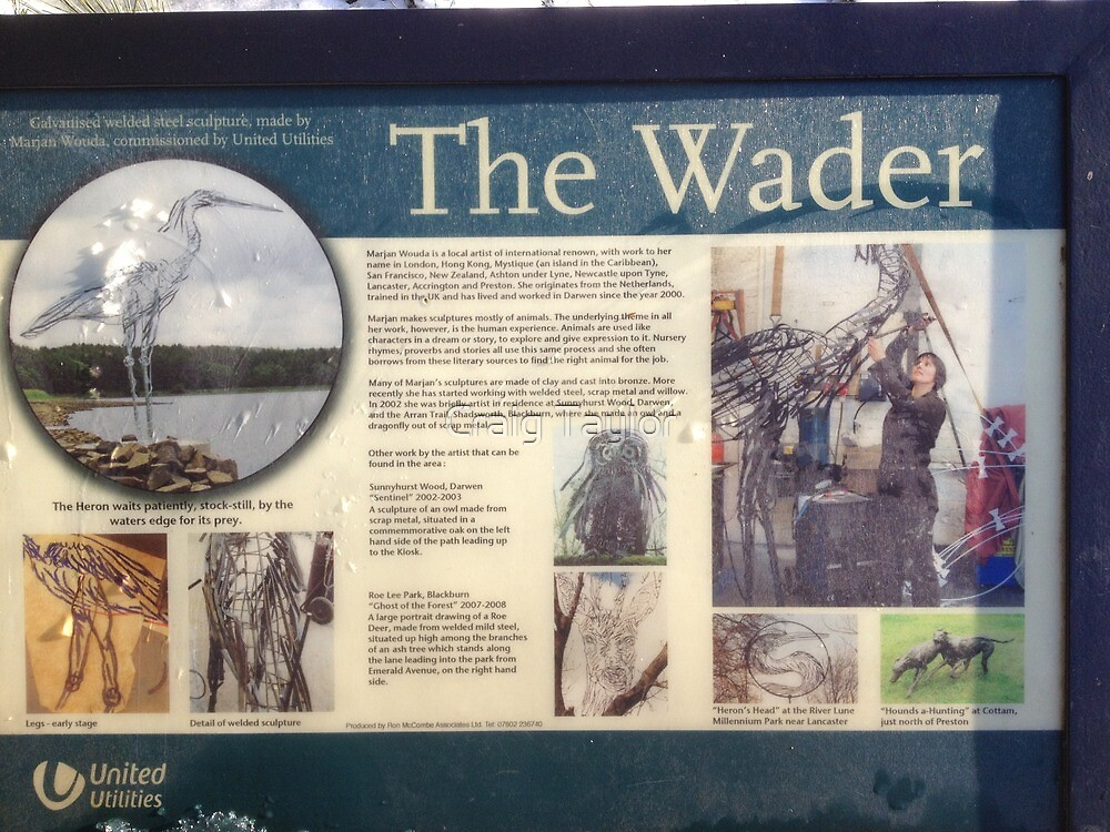 The Wader info by Craig Taylor