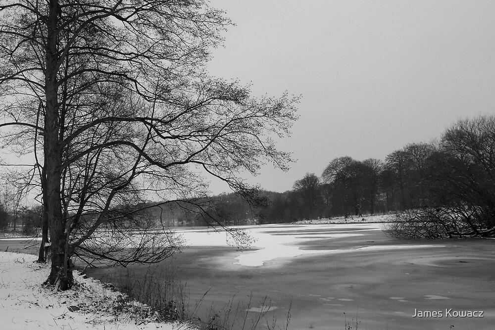 A Frozen Lake by James Kowacz