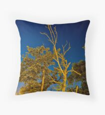 Aspirations Throw Pillow