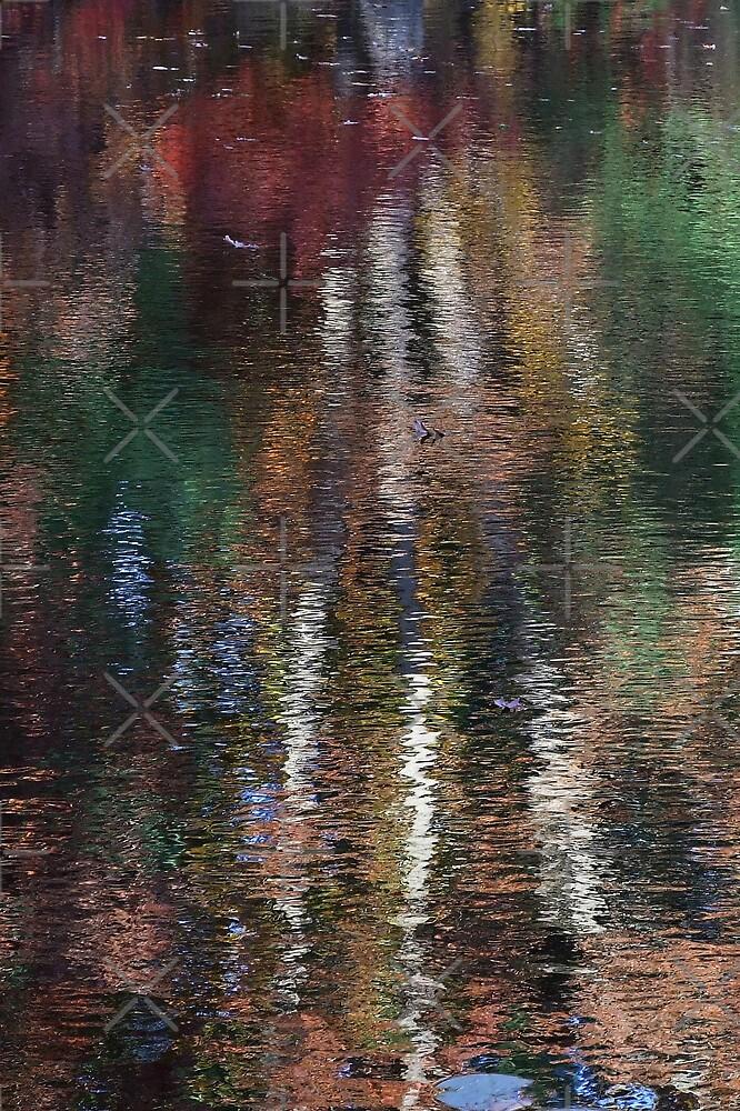 Three Tree Abstract Reflection by BavosiPhotoArt