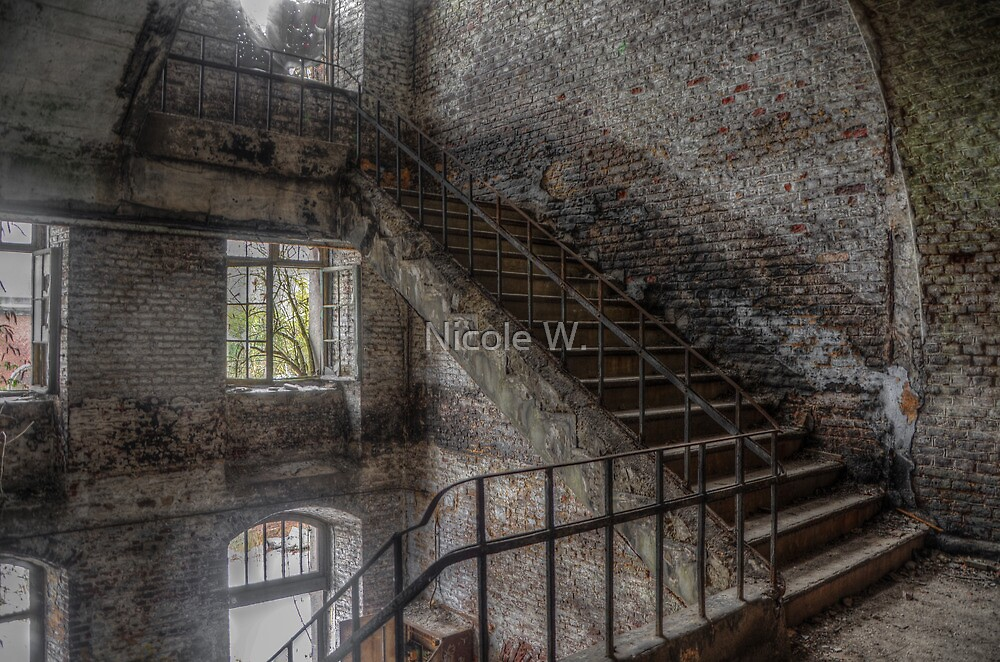 The main staircase by Nicole W.