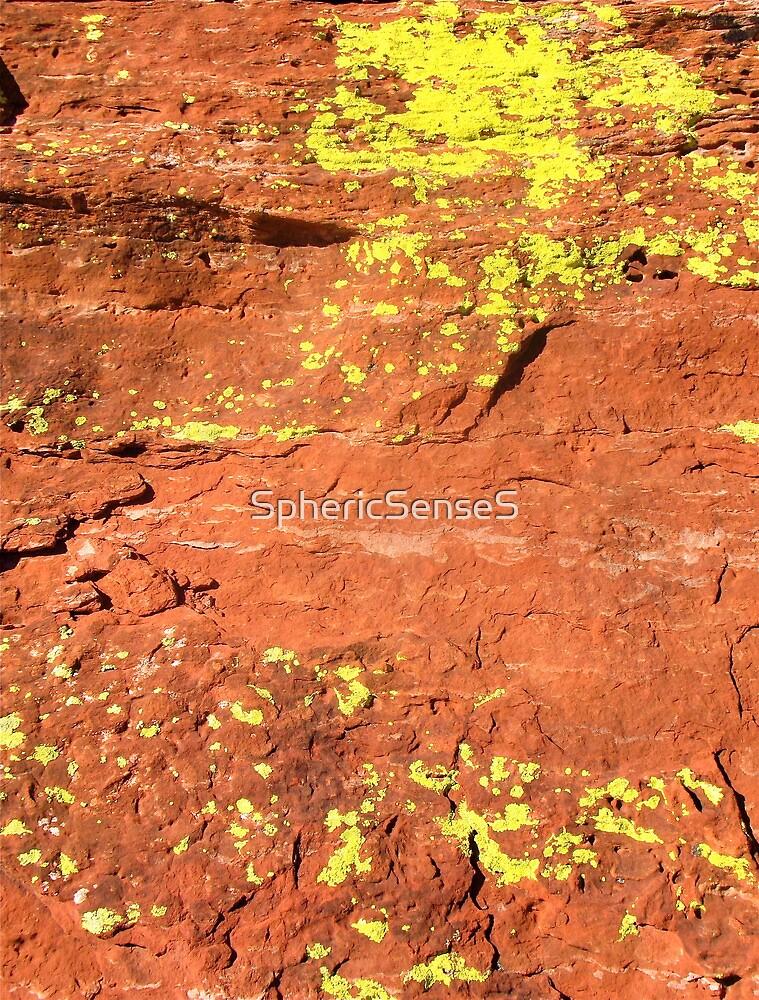 Lichen, Juniper, & Supai Sandstone #4 by SphericSenseS