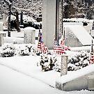 Snowfall 6 by d1373l