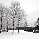 Winter Wonderland by d1373l