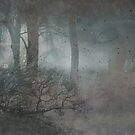 Watcher in The Woods by claraneva