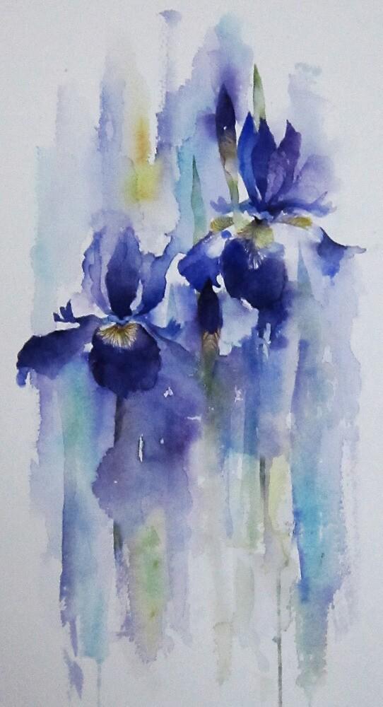 Irises by artbyrachel