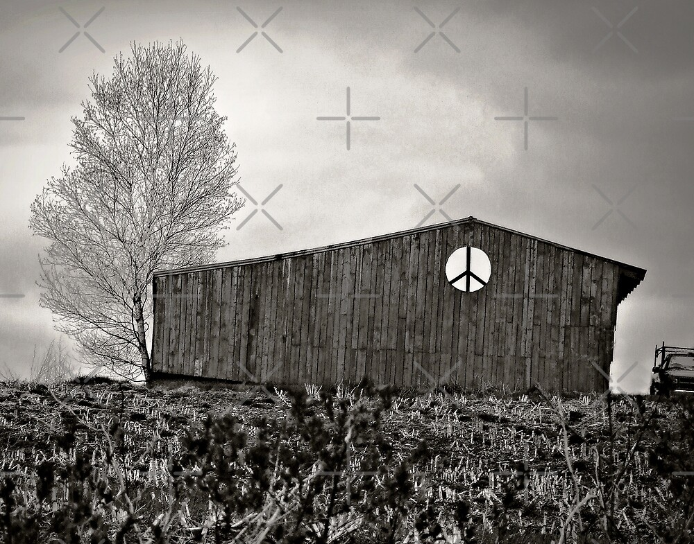 Peace Barn Friendship Maine by BavosiPhotoArt
