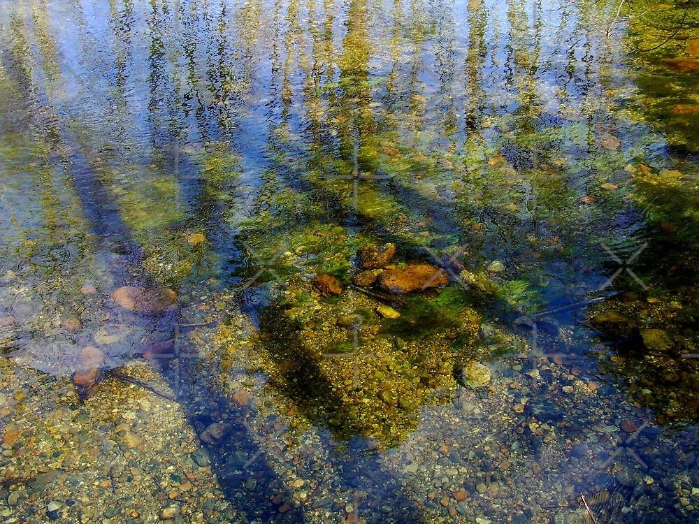 Swift River Reflection l by BavosiPhotoArt