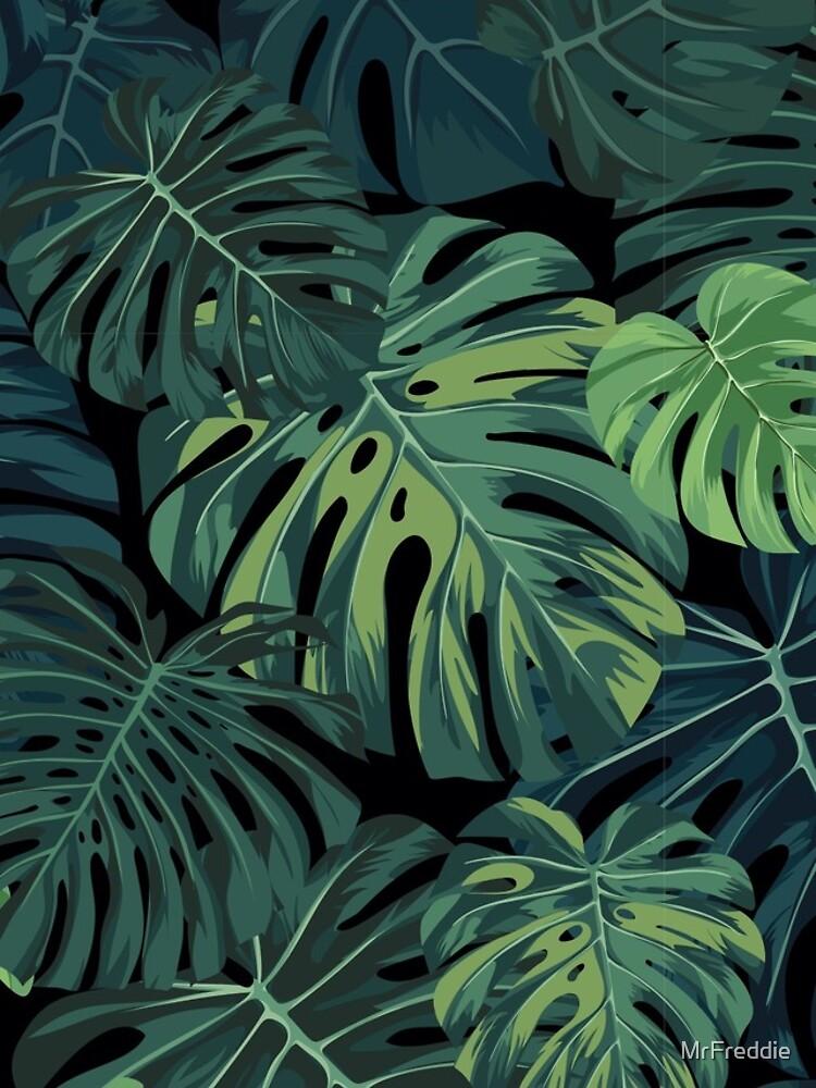 Monstera leaves by MrFreddie