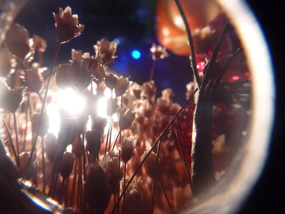 Beautiful Midnight Flowers by Jamestheamazing