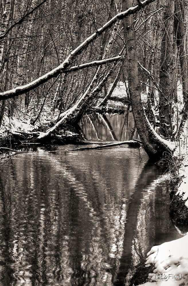 Reflections in the Snow by Nick Field