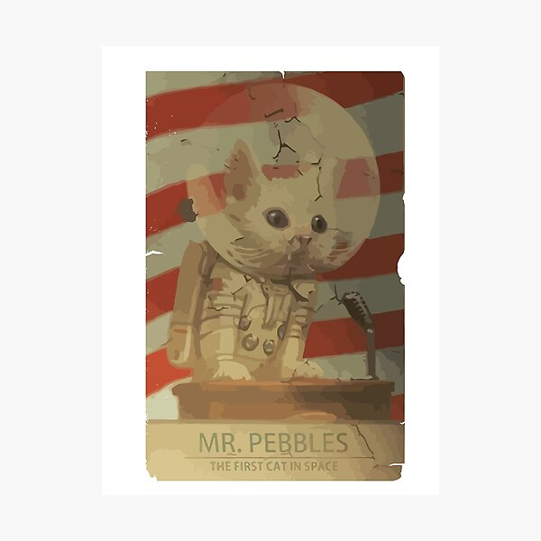 Mr. Pebbles - The first cat in space Photographic Print