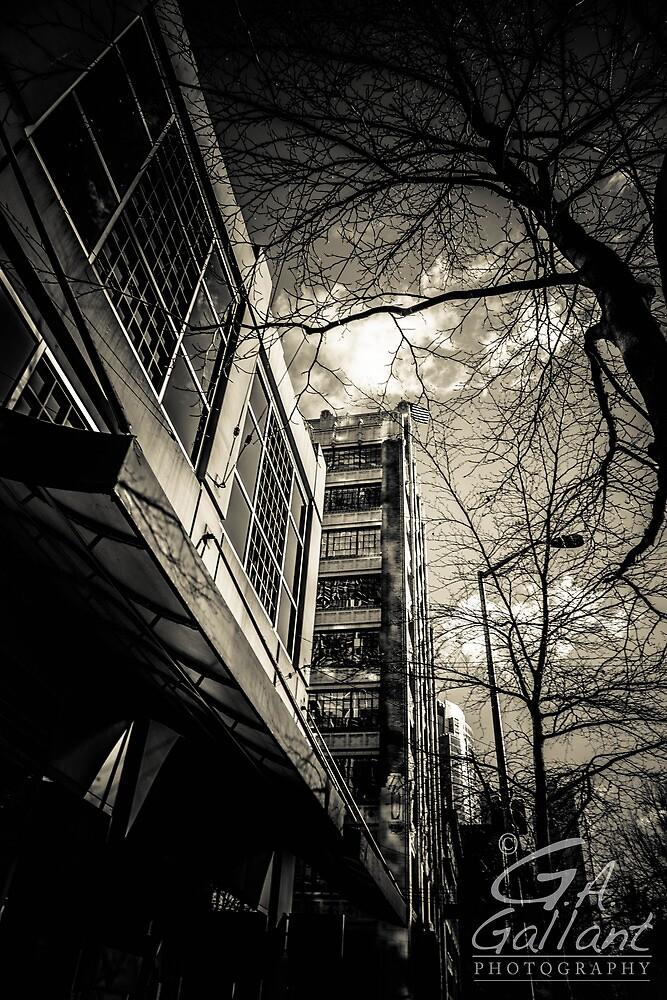 A Walk by Gabriel Alan Gallant