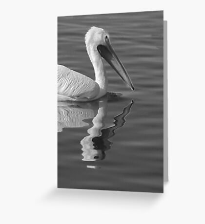Pelican Reflection Greeting Card
