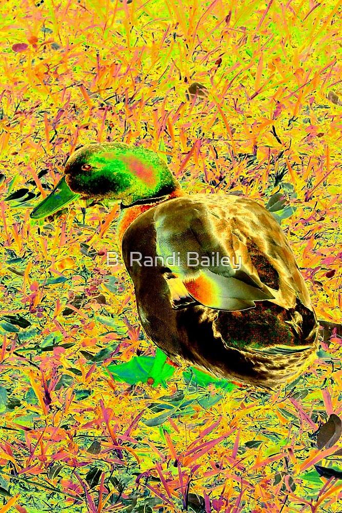 Cute brightly colored duck by ♥⊱ B. Randi Bailey