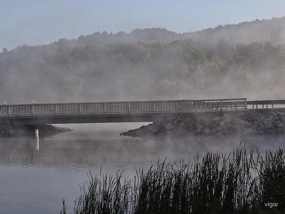 Fog arising by vigor