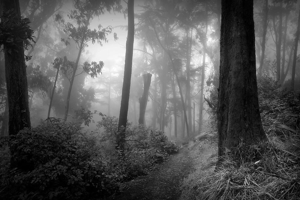 Introspection... by Richard Mason